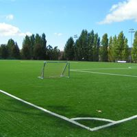 Facility Rentals - Sports Fields