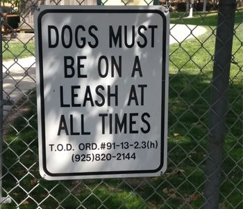 Dog Must Be On A Leash At All Times - Sign
