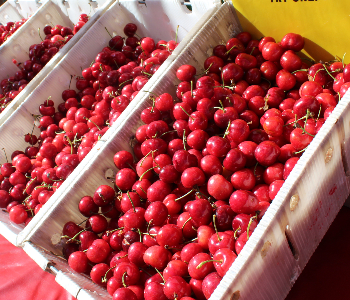 Cherries at the farmers' market