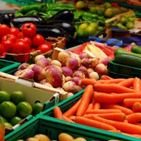A selection of vegetables at the farmers' market